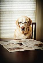 periódicos impresos