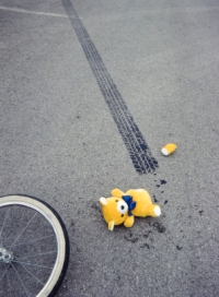 Unfallopfer Teddy