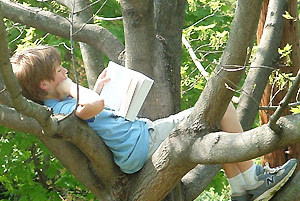 arbol leyendo