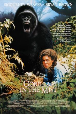 1988_gorilas_en_la_niebla_1