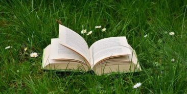 book-in-grass-668x336